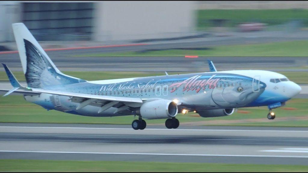 Alaska Airlines Boeing 737-800 Salmon Thirty Salmon II [N559AS] landing in PDX