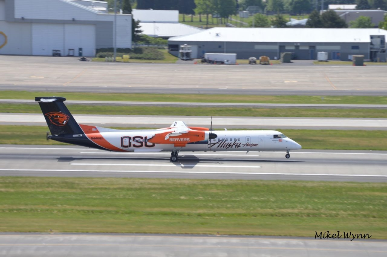 Alaska Horizon Air Bombardier DHC-8-402 Q400 (N440QX) in the Oregon State University Beavers livery arriving on 28L as QXE2029 from Spokane @Mikel Wynn