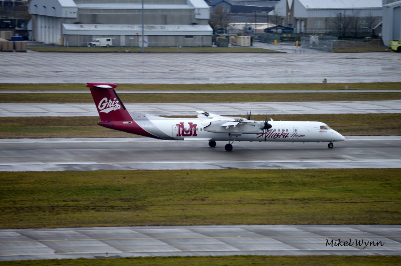 Horizon Air (d:b:a Alaska Airlines) Bombardier DHC-8-402 Dash 8 Q400 (N402QX) in the University of Montana Grizzlies livery arriving on 28L from Seattle @Mikel Wynn