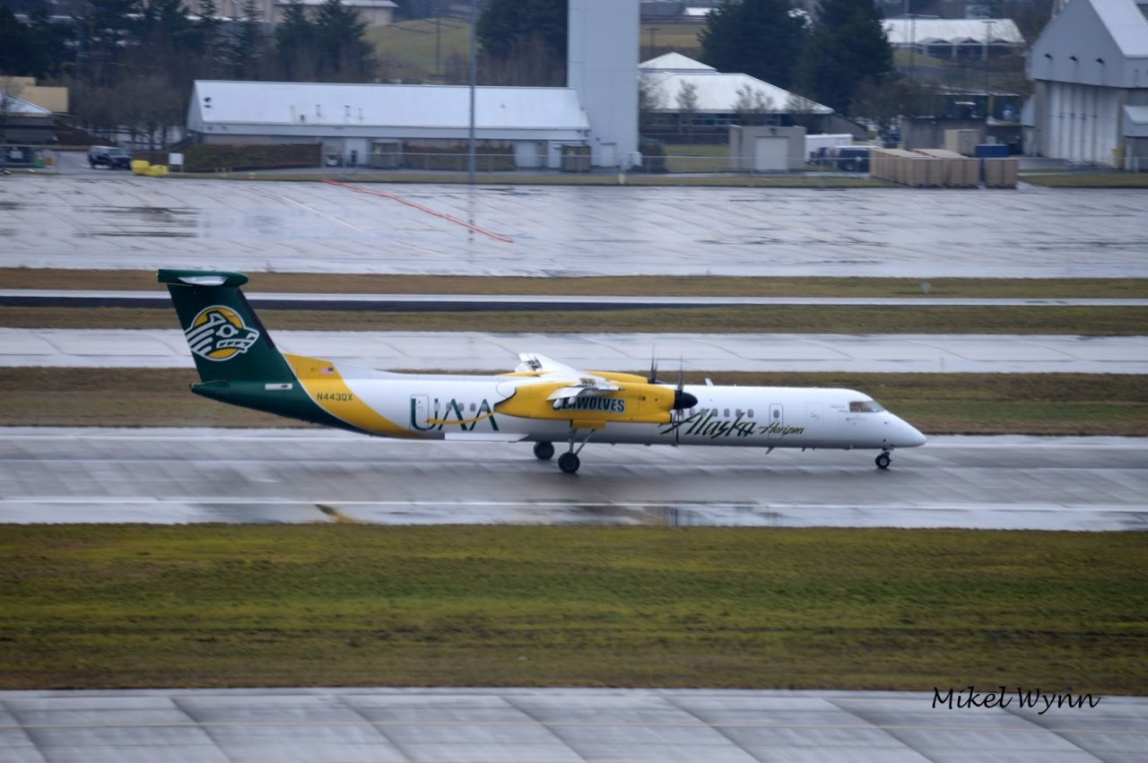 Horizon Air (d:b:a Alaska Airlines) Bombardier DHC-8-402 Dash 8 Q400 (N443QX) in the University of Alaska at Anchorage Seawolves livery arriving on 28L from Spokane as QXE2695 @Mikel Wynn