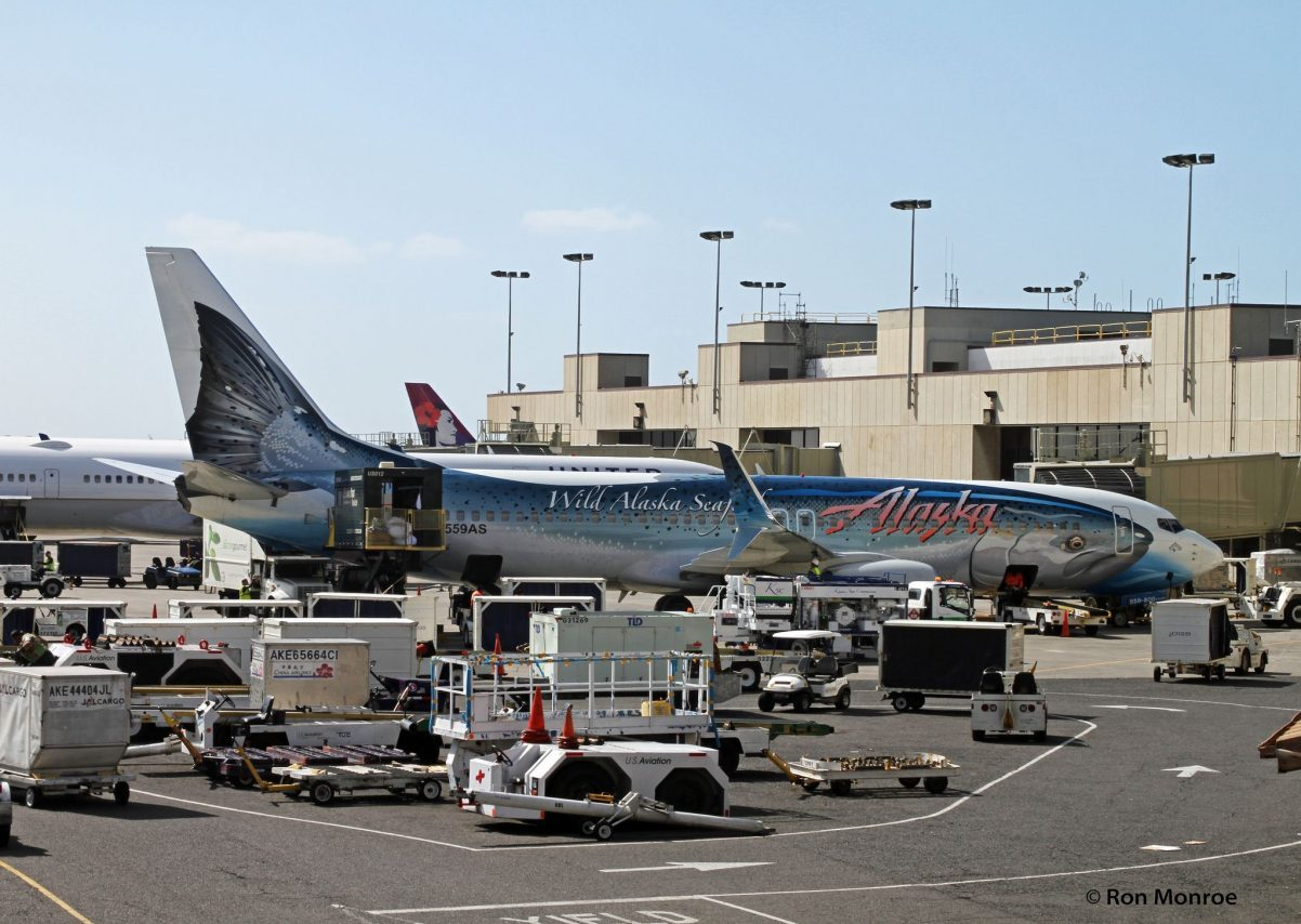 Special Livery, Alaska Airlines, Boeing Salmon Thirty Salmon II, Now with Scimitar Winglets @Ron Monroe