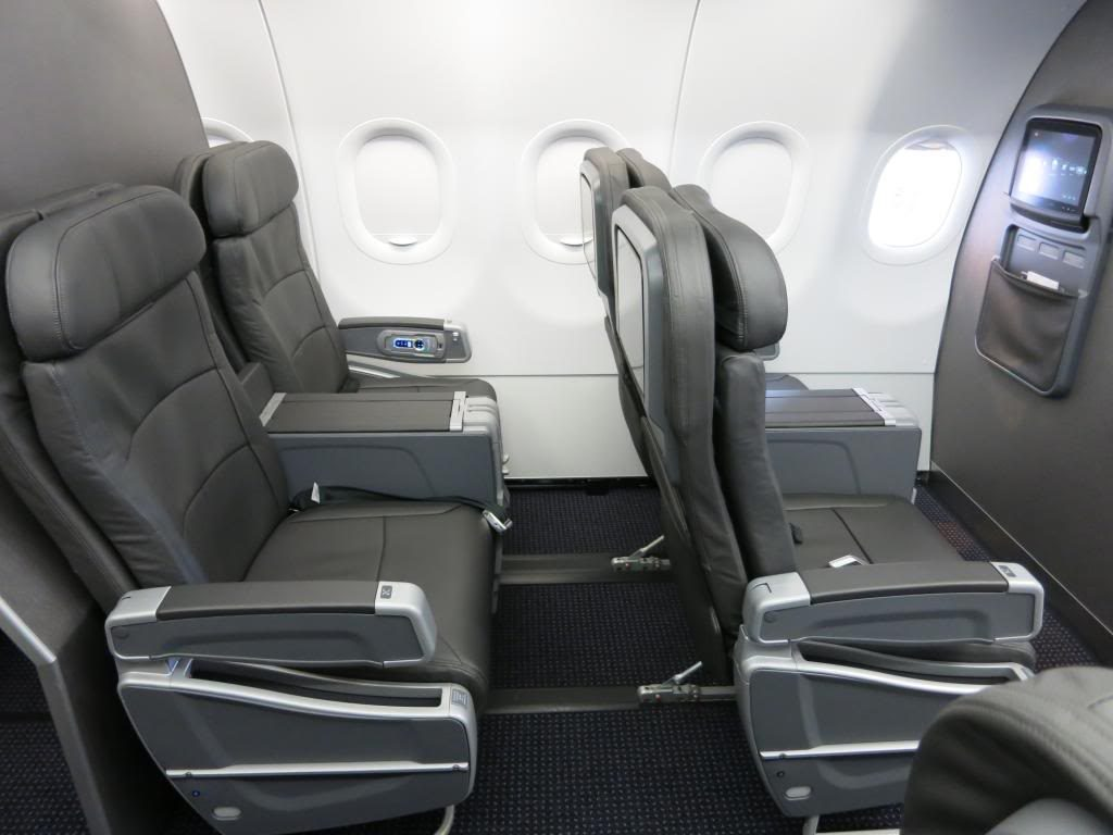 American Airlines Airbus A319-100 Leather Seats Photos