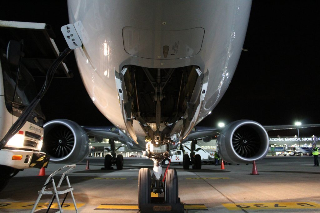 American Airlines Boeing 737 Max 8 Front View Photos