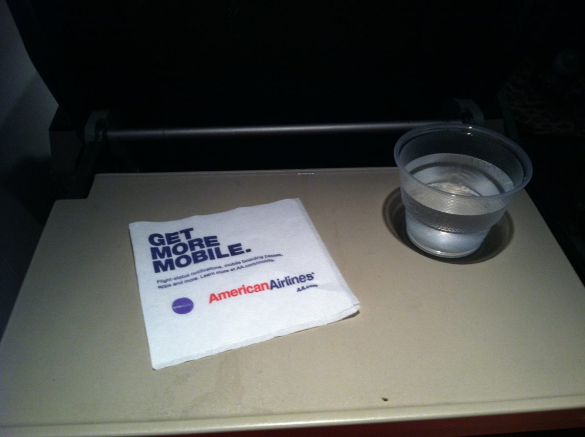 American Eagle Airlines Embraer ERJ-145 In-Flight Amenities