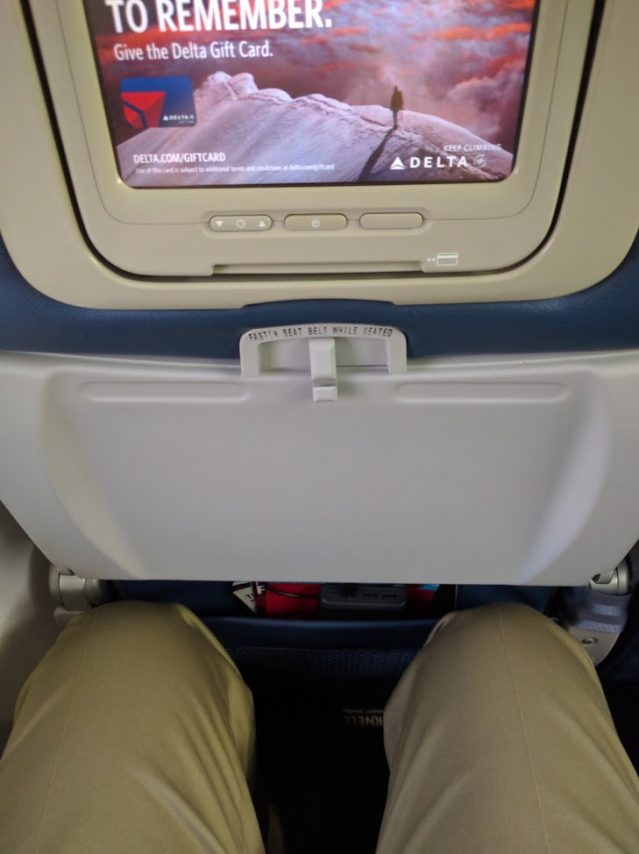 Delta Air Lines Boeing 737-800 Economy Class Seats Pitch Legroom Photos