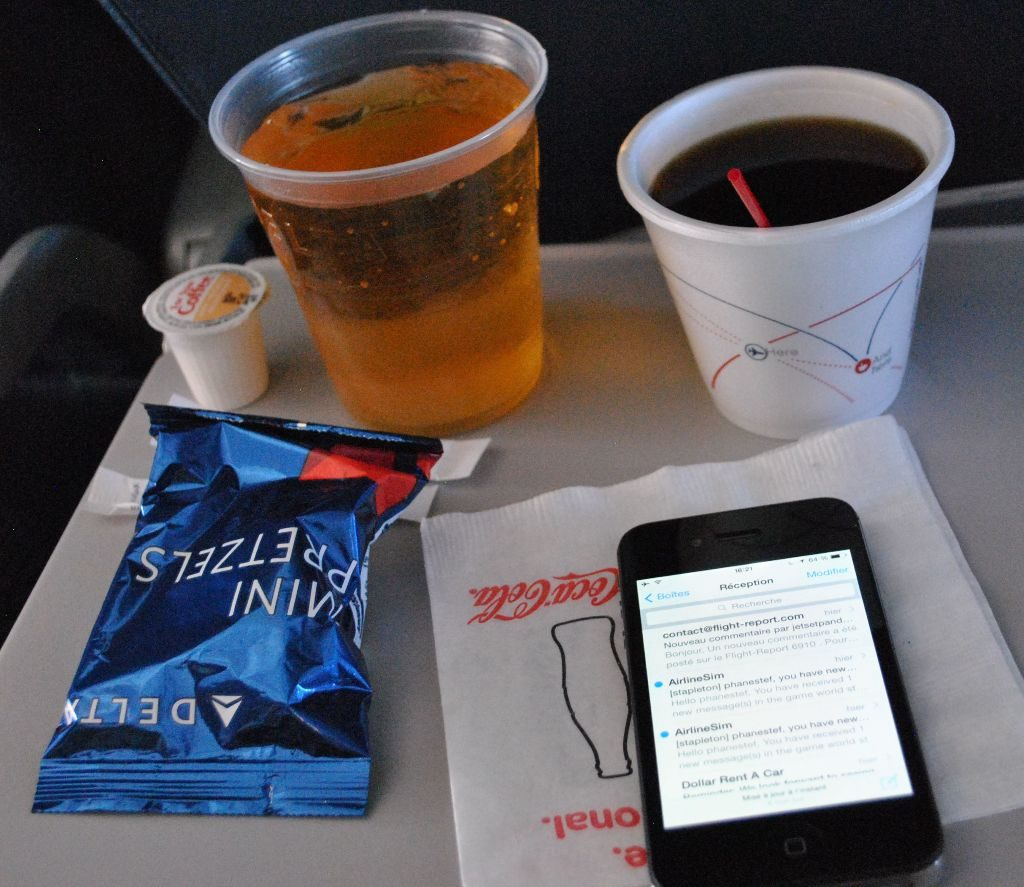 Delta Air Lines Boeing 737-800 Premium Economy (Comfort+) inflight snack and drinks services Photos