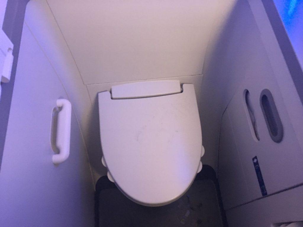 Delta Air Lines Boeing 737-900ER Premium Economy (Comfort+) Cabin Toilet Photos