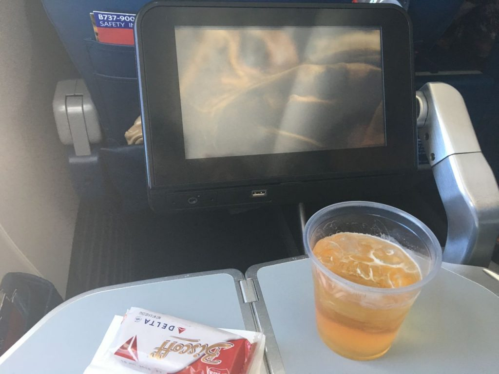 Delta Air Lines Boeing 737-900ER Premium Economy (Comfort+) Cabin in-flight Snack and Video Services Photos