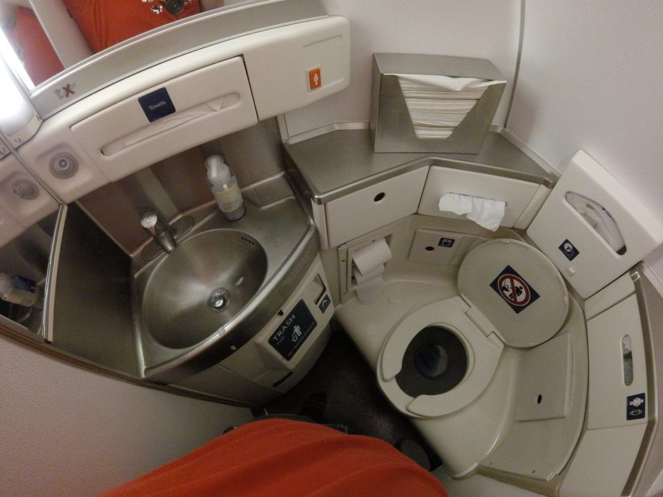 Delta Air Lines Regional Jet Fleet McDonnell Douglas MD-88 economy class cabin toilet:bathroom:lavatory photos