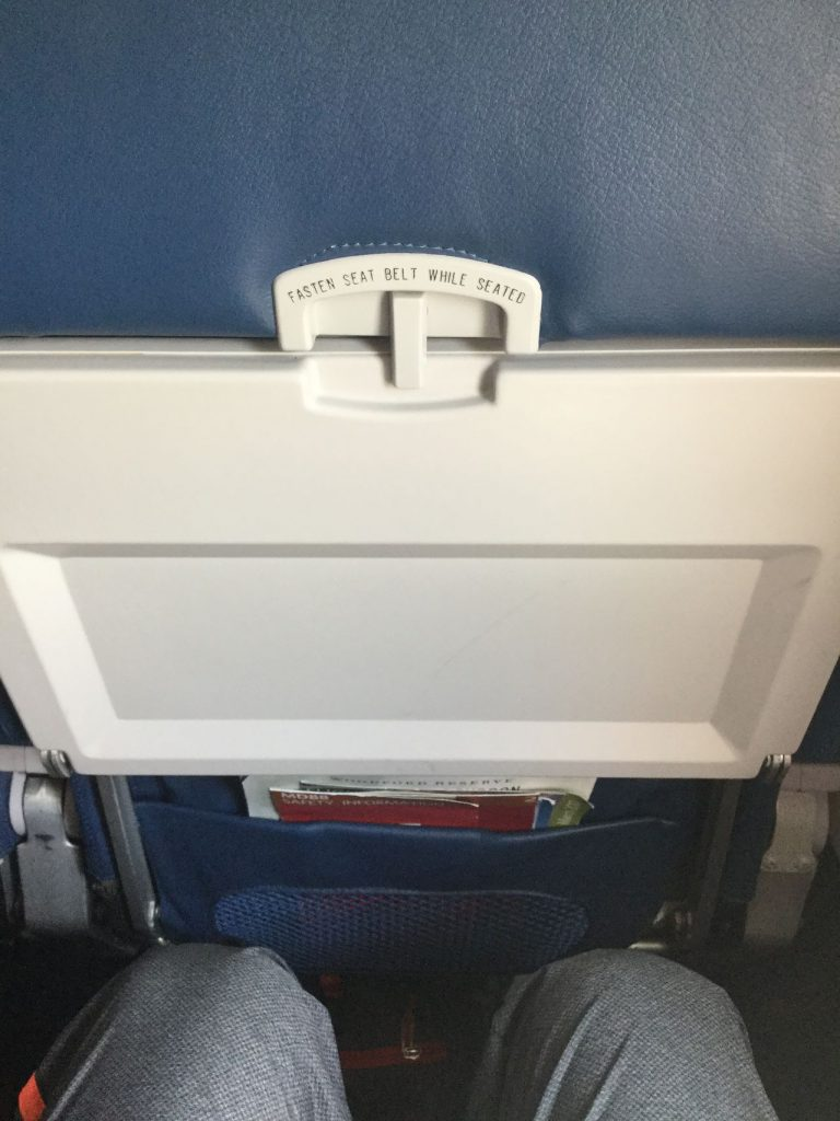 Delta Air Lines Regional Jet Fleet McDonnell Douglas MD-88 economy class seats pitch legroom photos