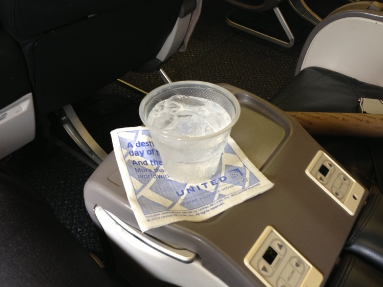 United Airlines Airbus A319-100 Business Class (Domestic First:United First) Pre-Departure Drink Services Photos