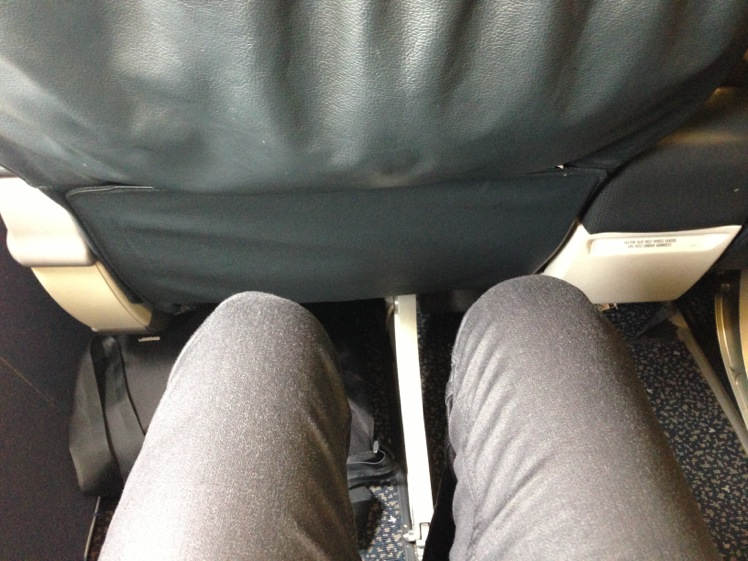 United Airlines Airbus A319-100 Business Class (Domestic First:United First) Seats Pitch Legroom Photos