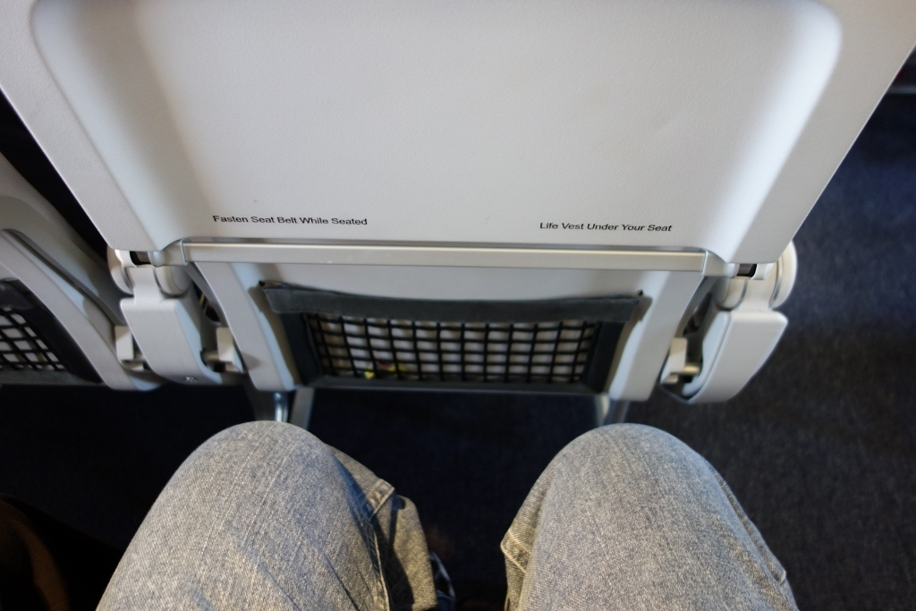 United Airlines Fleet Airbus A319-100 Economy Class Standard Seats pitch legroom photos