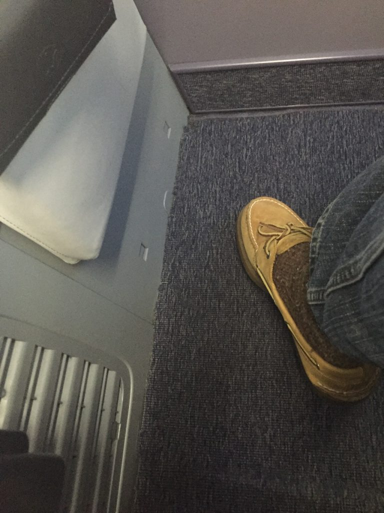 United Airlines Aircraft Fleet Boeing 737-900ER Business:First Class Cabin Carpet View
