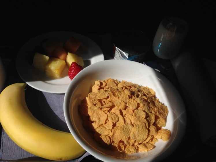 United Airlines Fleet Boeing 737-700 Business Class:Domestic First Cabin Inflight Amenities Breakfast and Meal Services