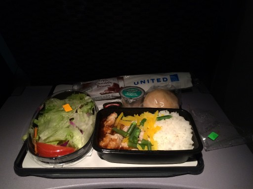 United Airlines Widebody Aircraft Boeing 777 200ER Economy Class Cabin Inflight Amenities Food Meal Menu Services chicken with rice