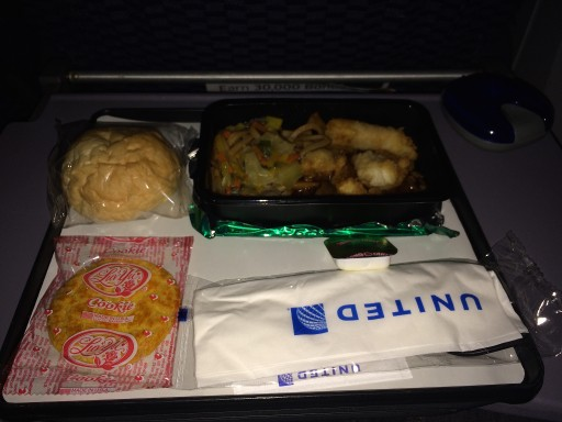 United Airlines Widebody Aircraft Boeing 777 200ER Economy Class Cabin Inflight Amenities Food Meal Menu Services noodles with some kind of breaded meat that tasted like chicken nuggets