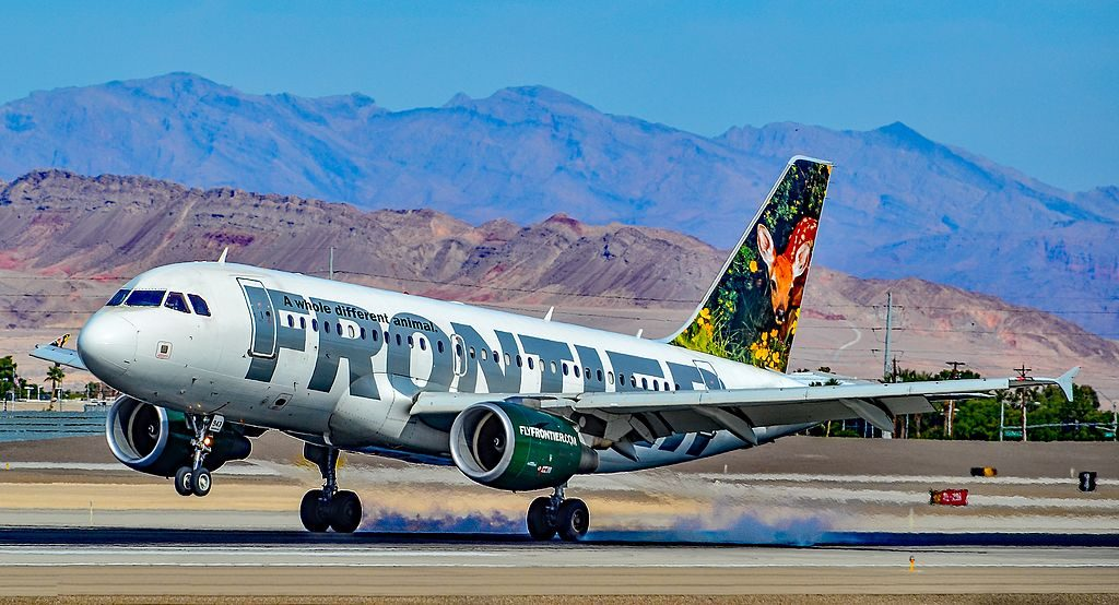 Airbus A319 112 Cloe the deer fawn Frontier Airlines N943FR hard landing at Las Vegas McCarran International Airport LAS KLAS