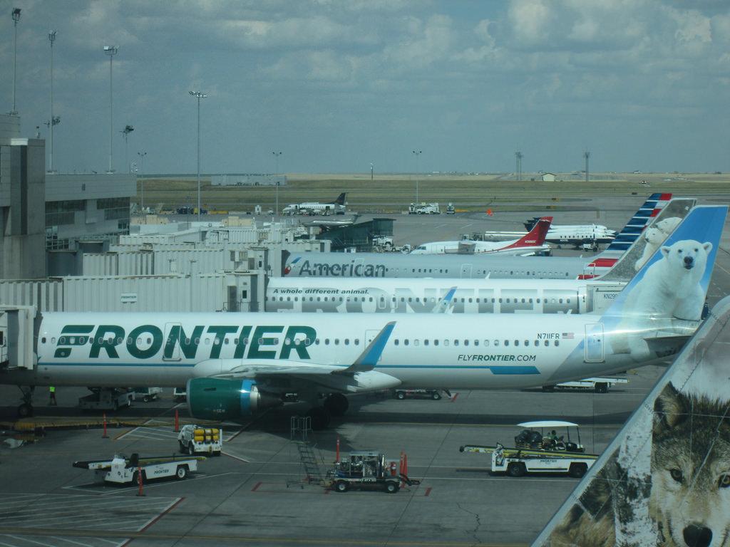 Airbus A321 211SL Frontier Airlines Aircraft Fleet N711FR MSN 7184 Powder the Polar Bear