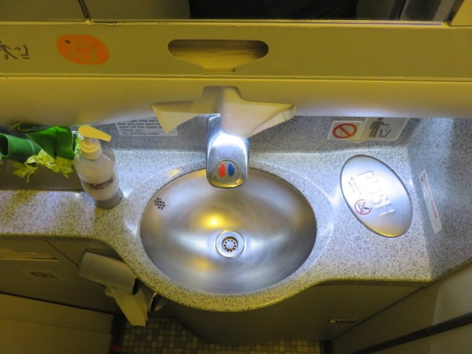Airbus A330 200 Hawaiian Airlines Domestic First Class Cabin BathroomToiletLavatory located behind the cockpit