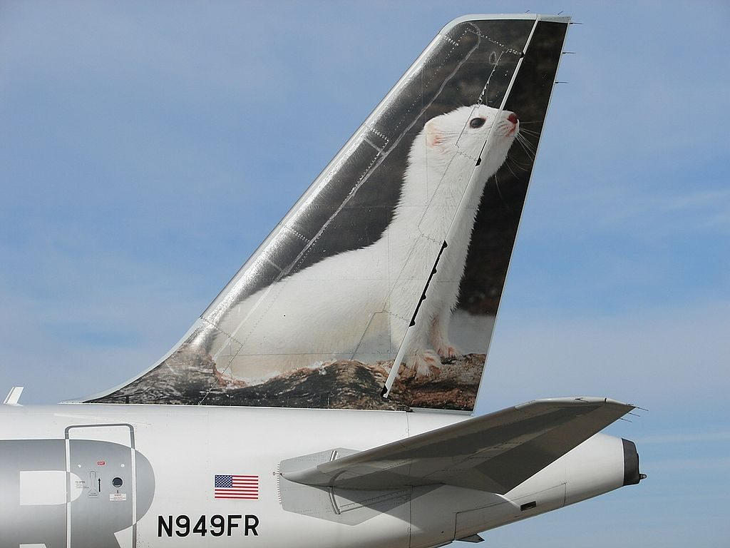 Frontier Airlines Airbus A319 100 N949FR Erma the White Ermine aircraft tail livery color