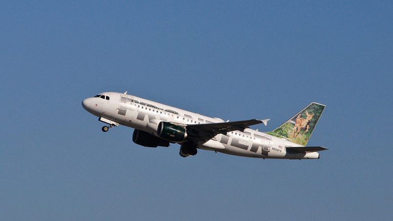 Frontier Airlines Domino Black Tail Deer Fawn Airbus A319 111 N926FR departing Los Angeles International Airport