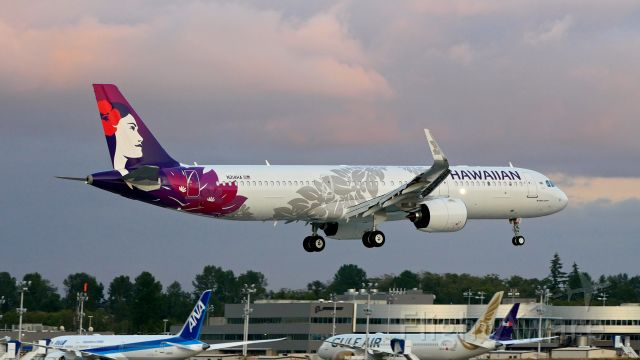 Hawaiian Airlines Aircraft Fleet Airbus A321Neo N214HA 22Kukui22 Landing and Takeoff Photos