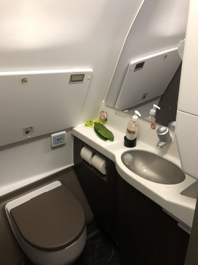 Hawaiian Airlines Aircraft Fleet Airbus A321neo First Class Cabin green orchids in the lavatory