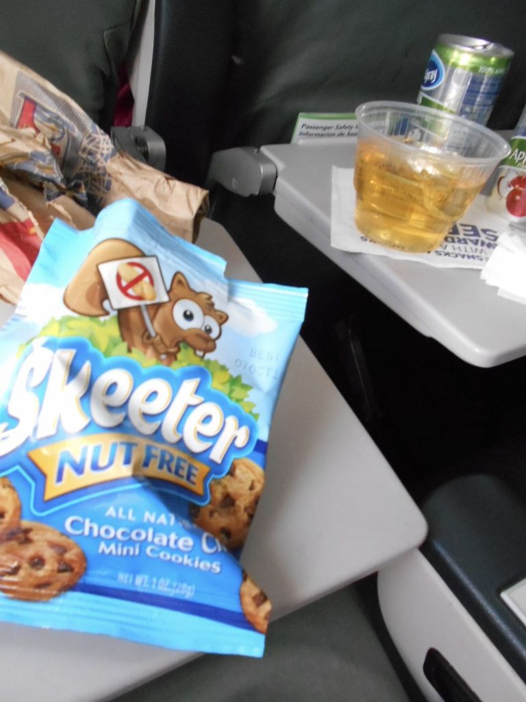 JetBlue Airways Airbus A320 200 Economy Cabin Standard Coach Seats Inflight Amenities Free Snacks