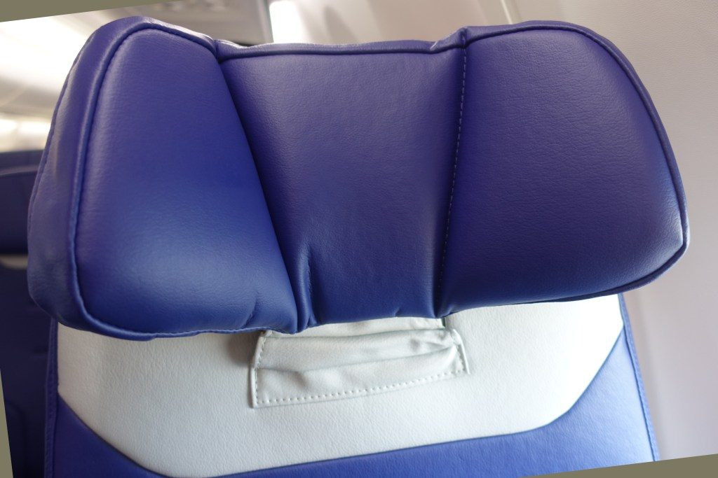 Southwest Airlines Boeing 737 Max 8 Standard Seats adjustable headrest Photos