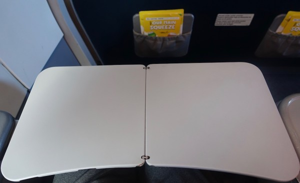 Spirit Airlines Airbus A319 100 Cabin Big Front Seats Tray Table Photos