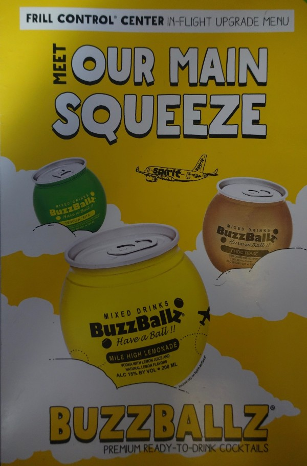 Spirit Airlines Airbus A319 100 onboard inflight services upgrade menu buzzballz