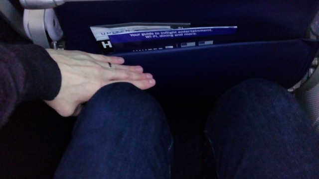 United Airlines Aircraft Fleet Boeing 787 8 Dreamliner Economy Class Standard Seats Pitch Legroom Photos