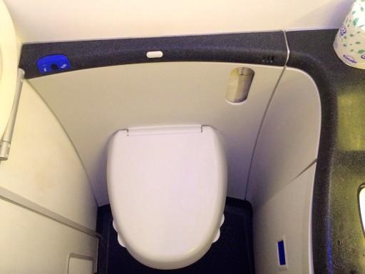United Airlines Aircraft Fleet Boeing 787 8 Dreamliner Economy Plus Premium Eco Cabin ToiletBathroomLavatory Photos