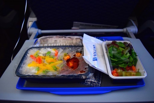 United Airlines Aircraft Fleet Boeing 787 8 Dreamliner Economy Plus Premium Eco Cabin inflight amenities meal services Korean chicken option