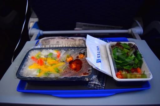United Airlines Aircraft Fleet Boeing 787 8 Dreamliner Economy Plus Premium Eco Cabin inflight amenities meal services Korean chicken option