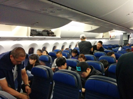 United Airlines Aircraft Fleet Boeing 787 9 Dreamliner Economy Class Cabin seats in 3 3 3 configuration