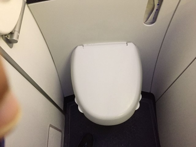 United Airlines Aircraft Fleet Boeing 787 9 Dreamliner Economy Plus Premium Eco Class Cabin BathroomToiletLavatory Photos 2