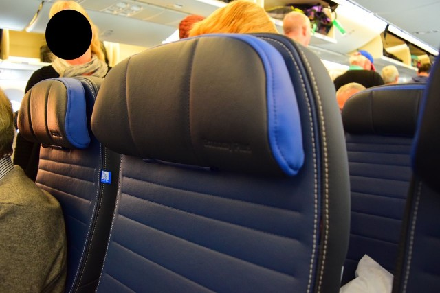 United Airlines Aircraft Fleet Boeing 787 9 Dreamliner Economy Plus Premium Eco Class Cabin new leather seats photos