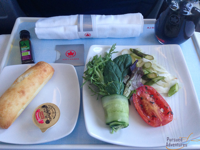Air Canada Airbus A319 100 Business Class Cabin Inflight Meal Dinner Services Appetizer Menu @Pursued Adventures