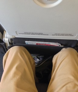 Airbus A319 100 Air Canada Rouge Standard Economy Seats Pitch Legroom Photos