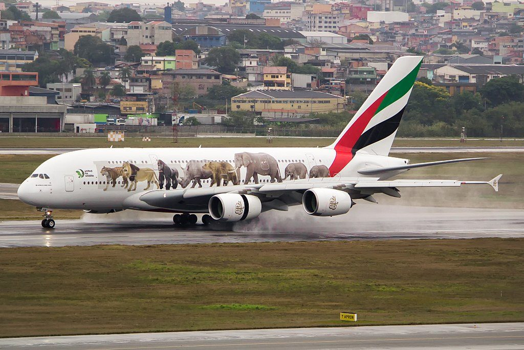 A6 EOM Airbus A380 800 United for Wildlife cs of Emirates at São Paulo Guarulhos International Airport