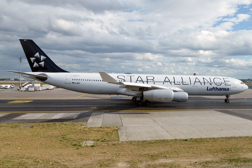 Lufthansa D AIFF Airbus A340 313 Delmenhorst on Star Alliance Livery at Frankfurt Airport