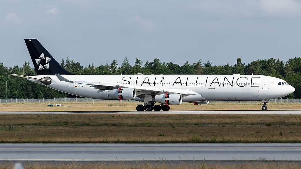 Lufthansa Star Alliance livery Airbus A340 300 D AIGV Dinslaken at Frankfurt Airport