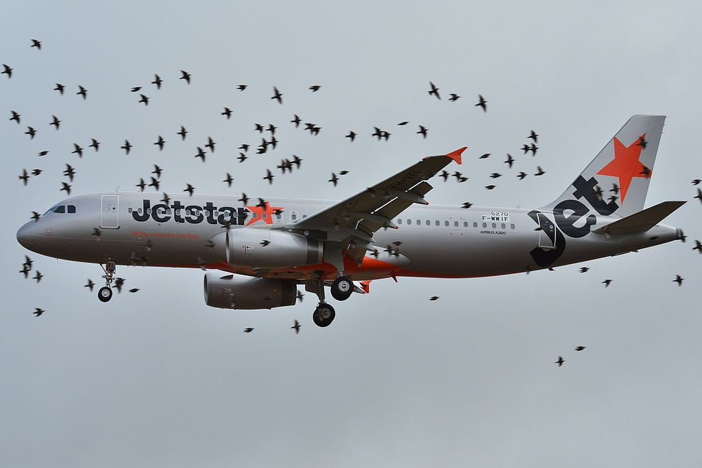 Airbus A320 232 VH VFI of Jetstar Airways at Toulouse Blagnac International Airport