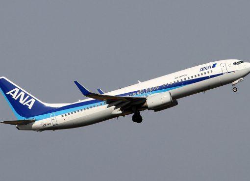 ANA Air Nippon JA57AN Boeing 737 800 at Tokyo International Airport
